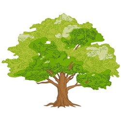 Oak Tree embroidery design