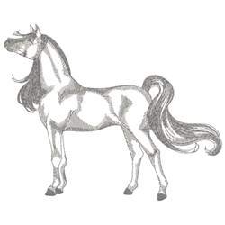 Arabian Horse Sketch embroidery design