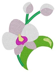 Oriental Orchid embroidery design