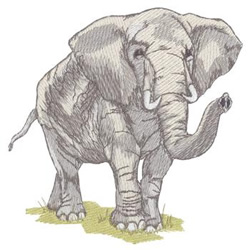 Elephant Embroidery Designs Machine Embroidery Designs At