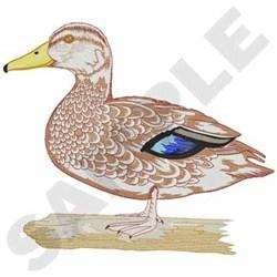 American Black Duck embroidery design