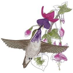 Calliope Humming Bird embroidery design