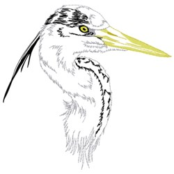 Grey Heron Head embroidery design