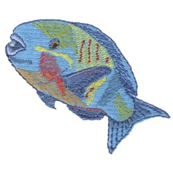Parrot Fish embroidery design