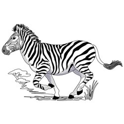 Running Zebra embroidery design