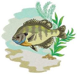 Bluegill embroidery design