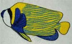 Ocean Fish embroidery design