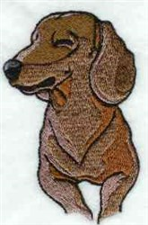 Realistic Dachshund embroidery design