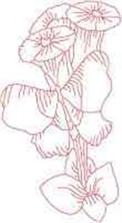 RW Morning Glory embroidery design