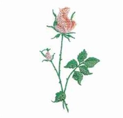 Light Pink Roses embroidery design