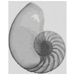 Fabanacci Spiral embroidery design