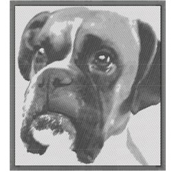 BOXER CANINE REALISTIC embroidery design