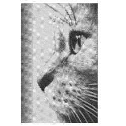 CAT PORTRAIT embroidery design