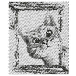 KITTY CAT PEEPING embroidery design