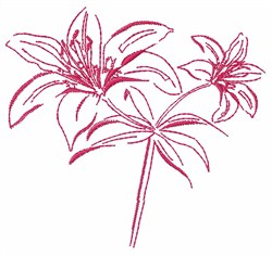 Lily Outline embroidery design