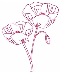 Poppy Ooutline embroidery design