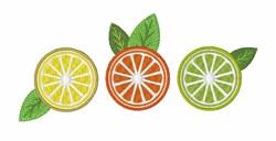 Citrus embroidery design
