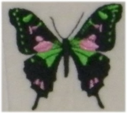 Tri Color Butterfly embroidery design