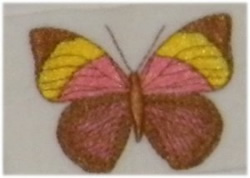 Big Stripe Butterfly embroidery design