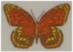 Lovely Butterfly embroidery design