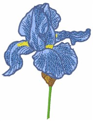 Blue Iris embroidery design