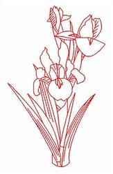 Redwork Iris embroidery design