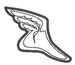 Track Shoe embroidery design