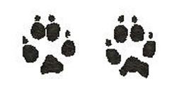 Grey Fox embroidery design