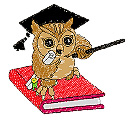 Owl on Book embroidery design