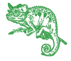 Realistic Chameleon Outline embroidery design