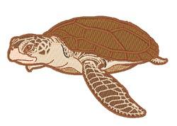 Realistic Sea Turtle embroidery design