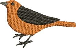 Robin Bird embroidery design