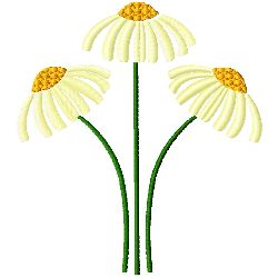 Camomile Flowers embroidery design