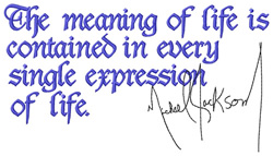 Meaning of Life embroidery design