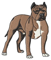 Staffy embroidery design