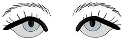Hooded Eyes and Eyebrows embroidery design