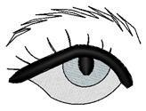 Hooded Eye & Eyebrow embroidery design