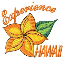 Experience Hawaii embroidery design