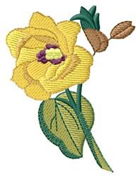 Hau embroidery design