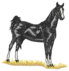 American Saddle Horse embroidery design
