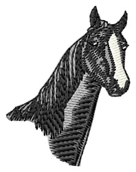 American Saddle Horse Head embroidery design
