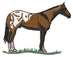 Appaloosa embroidery design