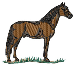 Barb Horse embroidery design