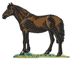 Criollo Horse embroidery design