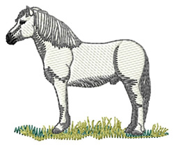 Highland Pony embroidery design