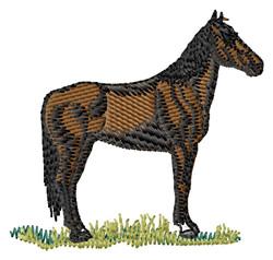 Maremma Horse embroidery design
