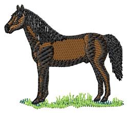 Morgan Horse embroidery design