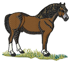 Welsh Pony #2 embroidery design