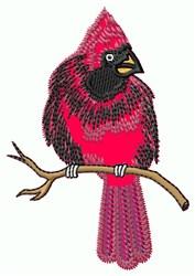 Applique Cardinal embroidery design