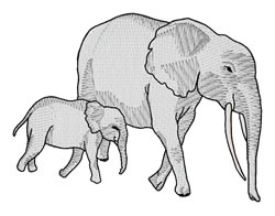Elephants embroidery design
